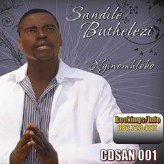 Sandile Buthelezi - Nginomhlobo (CD)