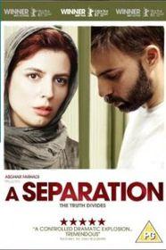 A Separation (DVD)