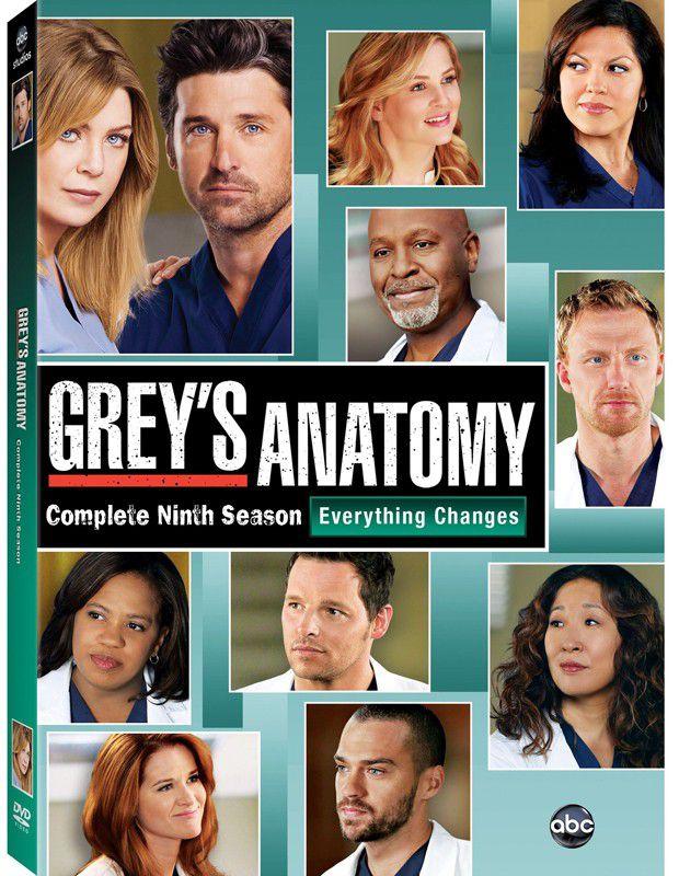Greys Anatomy Complete Season 9 Dvd Buy Online In South Africa