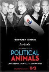 Political Animals Season 1 (DVD)