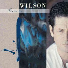Brian Wilson - Brian Wilson (CD)