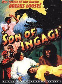 Son of Ingagi - (Region 1 Import DVD)
