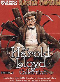 Harold Lloyd Collection - (Region 1 Import DVD)