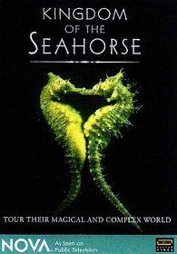 Kingdom of the Seahorse - (Region 1 Import DVD)