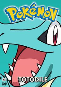 Pokemon All Stars Vol 16 - (Region 1 Import DVD)