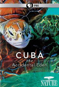 Cuba:Accidental Eden - (Region 1 Import DVD)