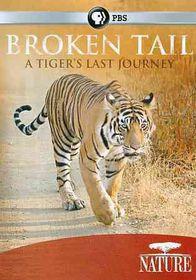 Nature:Broken Tail Tiger?S Last Journ - (Region 1 Import DVD)