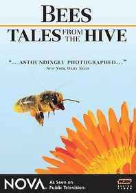 Bees:Tales from the Hive - (Region 1 Import DVD)
