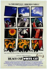 Black Cat White Cat (Import DVD)