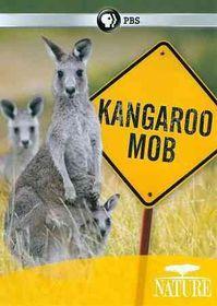 Nature:Kangaroo Mob - (Region 1 Import DVD)