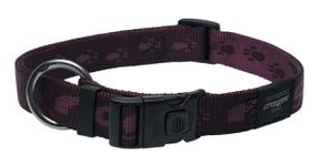 Rogz - Alpinist 25mm Dog Collar - Purple