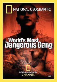 World's Most Dangerous Gang - (Region 1 Import DVD)