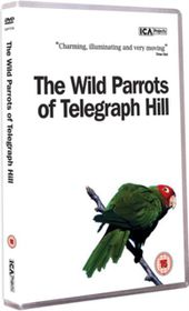 Wild Parrots of Telegraph Hill - (Import DVD)