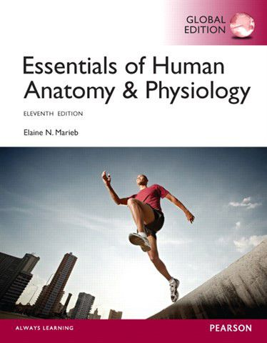 Essentials Of Human Anatomy & Physiology, Global Edition | Buy ...