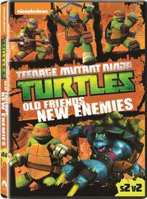 Teenage Mutant Ninja Turtles: Old Friends, New Enemies (DVD)