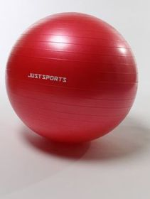 Just Sports 65cm Burst Resistant Ball