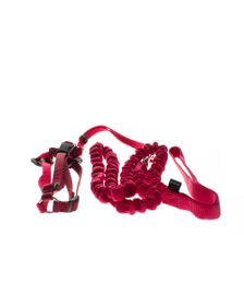 Easy Walk - Cat Harness And Cat Collar - Red