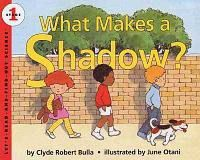 What Makes A Shadow