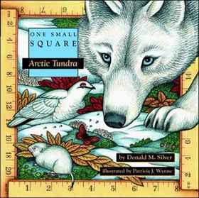Arctic Tundra
