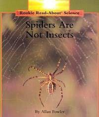 Spiders Are Not Insects