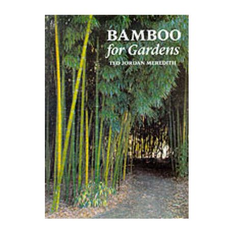 Bamboo for Gardens   Buy Online in South Africa   takealot.com 335ebf3849