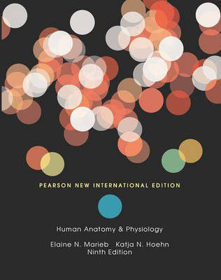 Human Anatomy & Physiology | Buy Online in South Africa | takealot.com