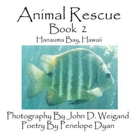 Animal Rescue, Book 2, Hanauma Bay, Hawaii