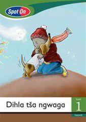 Spot On Sepedi Grade 1 Reader: Dihla tša ngwaga Little Book [Seasons]