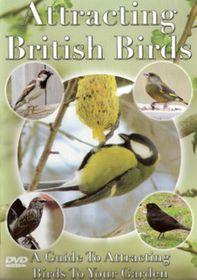 Attracting British Birds - (Import DVD)