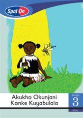 Spot On IsiZulu Grade 3 Reader: Akukuho Okunjani Konke Kuyabulala Little Book [Diseases]