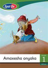 Spot On IsiXhosa Grade 1 Reader: Amaxeshaonyaka Big Book [Seasons]