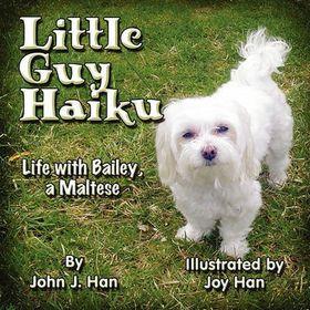 Little Guy Haiku