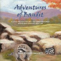 Adventures of Bandit