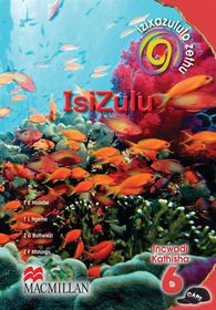 Izixazululo Zethu IsiZulu Sanamuhla
