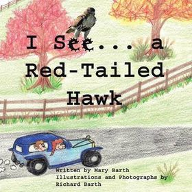 I See . . . a Red-Tail Hawked
