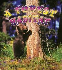 A Forest Habitat