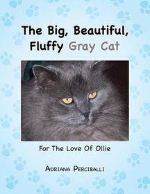 The Big, Beautiful, Fluffy Gray Cat