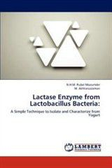 Lactase Enzyme from Lactobacillus Bacteria