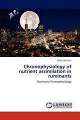 Chronophysiology of Nutrient Assimilation in Ruminants