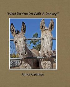 What Do You Do with a Donkey?