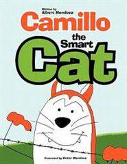 Camillo the Smart Cat