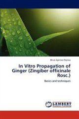 In Vitro Propagation of Ginger (Zingiber Officinale Rosc.)