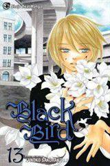 Black Bird Vol 13