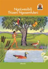 Junior African Writers Series IsiZulu: Ngolwesibili Thizeni Ngase [One Tuesday Down by the River]