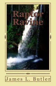 Raptor Ravine