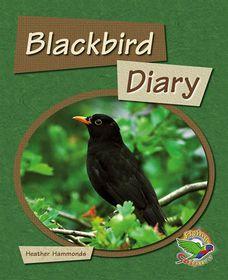 Flying Colours: Blackbird Diary