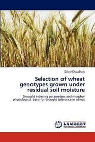 Selection of Wheat Genotypes Grown Under Residual Soil Moisture