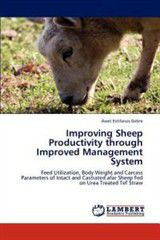 Improving Sheep Productivity Through Improved Management System