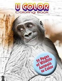 U Color