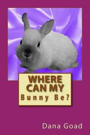 Where Can My Bunny Be?